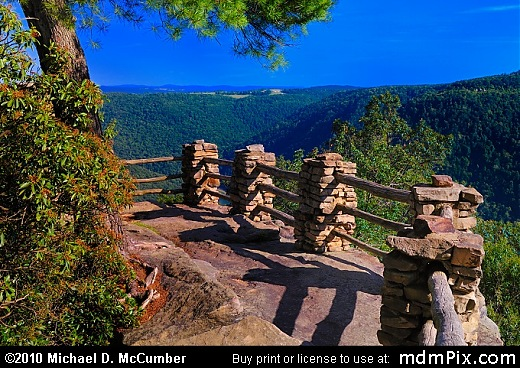 Picnic at Coopers Rock!